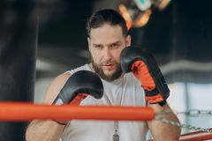 Porträt des starken Mannes auf dem Boxring, der Kamera betrachtet stockfotos