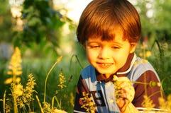 Porträt des stilvollen schönen kleinen Jungen, der mit einer Blume spricht Stockfotografie