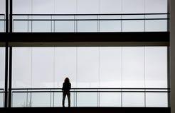 Porträt einer Frau mit dem langen roten Haar Lizenzfreies Stockbild