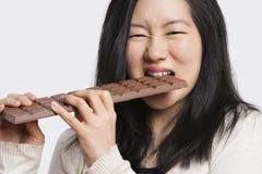 Porträt einer jungen Frau, die einen großen Schokoriegel über hellgrauem Hintergrund isst Lizenzfreies Stockbild