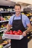 Porträt einer lächelnden hübschen Holding ein Kasten mit Gemüse Lizenzfreie Stockfotografie