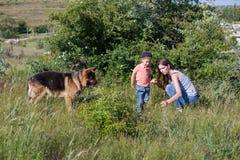 Porträt einer Mutter mit einem jungen Sohn und einem Hund im Wald lizenzfreies stockfoto