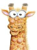 Porträt einer netten Wanze-äugigen Giraffe auf einem weißen Hintergrund Stockfotos