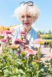 Porträt einer ruhigen älteren Frau, die im Garten an einem sonnigen Tag steht Lizenzfreies Stockbild