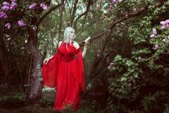 Porträt einer schönen Elfenfrau in einem roten Kleid Lizenzfreie Stockfotos
