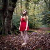 Porträt einer schönen Jugendlichen im kurzen Kleid, das herein steht Stockfotos