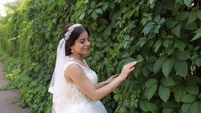 Porträt einer schönen jungen Braut in einem sonnigen Sommer Park stock video