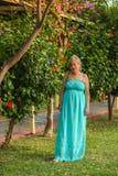 Porträt einer schönen kaukasischen Frau von mittlerem Alter mit einer schönen Zahl und große Brüste in einem schönen Sommer kleid stockbilder