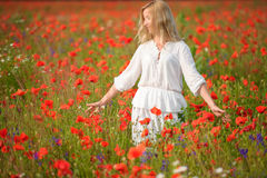 Porträt einer Schönheit auf einem Gebiet mit Blumen Lizenzfreie Stockfotos