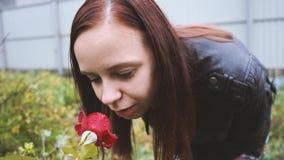 Porträt einer Schönheit schnüffelt die Rose im Park Nahaufnahmegesicht und stieg Weicher Fokus stock video