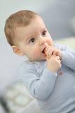 Porträt eines Babys, das einen Keks isst Lizenzfreie Stockbilder