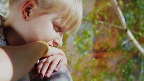 Porträt eines durchdachten blonden Mädchens 6 Jahre alt Er schaut heraus das Fenster, einen klaren Frühlingstag, außerhalb des Fe stock video footage
