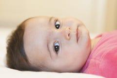 Porträt eines entzückenden Babys mit netten Backen Lizenzfreie Stockbilder