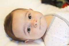 Porträt eines entzückenden Säuglingsbabys mit netten Augen Stockfotografie