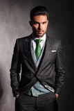 Porträt eines ernsten eleganten Mannes im Smoking Lizenzfreies Stockfoto