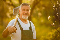 Porträt eines hübschen älteren Mannes, der in seinem Garten im Garten arbeitet stockfoto