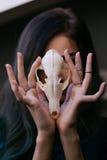 Porträt eines jungen Mädchens, das einen mysteriösen Schädel in den Händen eines Fuchses hält Gemaltes langes Haar Stockbild