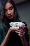 Porträt eines jungen Mädchens, das einen mysteriösen Schädel in den Händen eines Fuchses hält Gemaltes langes Haar Stockfoto