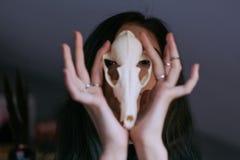 Porträt eines jungen Mädchens, das einen mysteriösen Schädel in den Händen eines Fuchses hält Gemaltes langes Haar Lizenzfreie Stockfotografie
