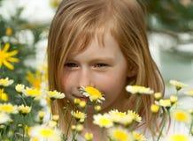 Porträt eines kleinen Mädchens sieben Jahre alt, Schnüffelngänseblümchen Stockfoto