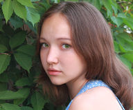 Porträt eines Mädchens auf der Natur Lizenzfreie Stockbilder