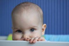 Porträt eines 11-Monats-Babys Stockfotografie
