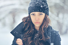 Porträt eines netten Brunette in einem eisigen Park Stockbilder
