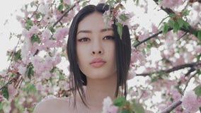 Porträt eines schönen asiatischen Mädchens draußen gegen Frühlingsblütenbaum stock video