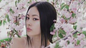 Porträt eines schönen asiatischen Mädchens draußen gegen Frühlingsblütenbaum backstage stock video footage