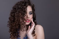 Porträt eines schönen Mädchens auf einem grauen Hintergrund Lizenzfreie Stockfotografie