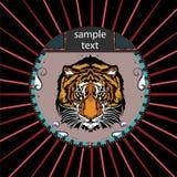 Porträt eines Tigers in einem Kreis Lizenzfreies Stockbild
