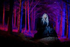 Porträt im dunklen Wald stockfotos