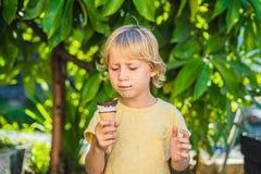 Porträt im Freien des glücklichen Jungen mit Eiscreme im Waffelkegel CU lizenzfreies stockbild