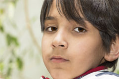 Porträt im Freien des Jungen. Stockfotos
