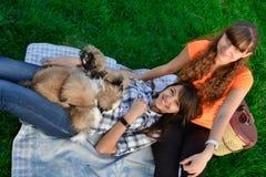 Porträt im Freien von zwei netten Mädchen, die mit Ingwerkatze und Welpen von Chinese-Shar Pei-Hund auf grünem Gras umarmen Glück stockfoto