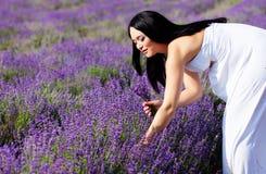 Porträt im Lavendel lizenzfreie stockfotos