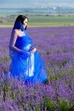 Porträt im Lavendel lizenzfreies stockfoto
