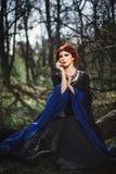 Porträt schöner mittelalterlicher Dame im feenhaften Wald Lizenzfreie Stockfotografie