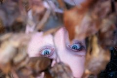 Porträt, schönes sexy reizendes junges rothaariges Mädchen, das unter einer Niederlassung mit goldenem Herbstlaub, mit freundlich lizenzfreie stockbilder