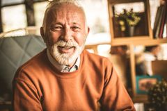 Porträt von älteren Geschäftsmännern Lächeln lizenzfreies stockbild