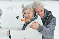 Porträt von älteren Paaren Lizenzfreies Stockfoto