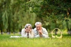 Porträt von den älteren Paaren, die ein Picknick im Sommer haben lizenzfreie stockfotos