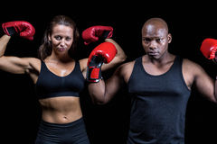 Porträt von den Boxern, die Muskeln biegen Stockfotos
