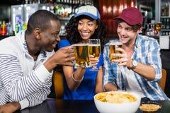 Porträt von den Freunden, die etwas trinken Lizenzfreie Stockfotografie