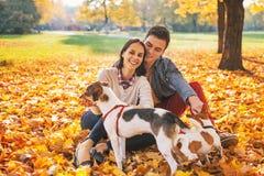 Porträt von den glücklichen jungen Paaren, die draußen sitzen und mit Hunden spielen stockfoto