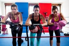 Porträt von den jungen weiblichen Boxern, die auf Seil sich lehnen Stockfotos
