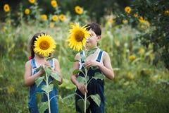 Porträt von den netten Mädchen, die hinter Sonnenblumen sich verstecken Stockfoto