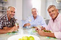 Porträt von den reifen männlichen Freunden, die zu Hause Mahlzeit genießen lizenzfreie stockfotos