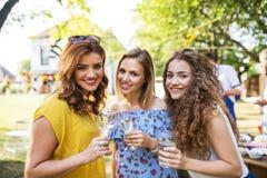 Porträt von drei Frauen auf einer Familienfeier oder einer Grillpartei draußen im Hinterhof lizenzfreie stockbilder