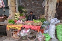 Porträt von ein Gemüseverkäufer in der berühmten Lebensmittel-Straße, Lahore, Pakistan Lizenzfreies Stockfoto